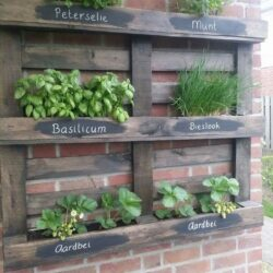 Palette als Kräutergarten. – # als # Kräutergarten - Diy And Crafts